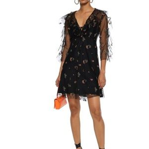 Ruffle-trimmed embroidered tulle mini dres